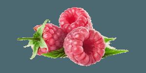 цвет малина mini
